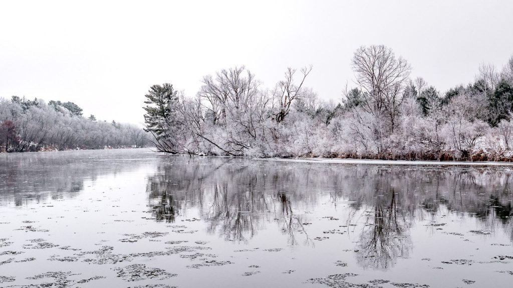 dunn county, hoarfrost, menomonie, winter, frost, trees, wisconsin