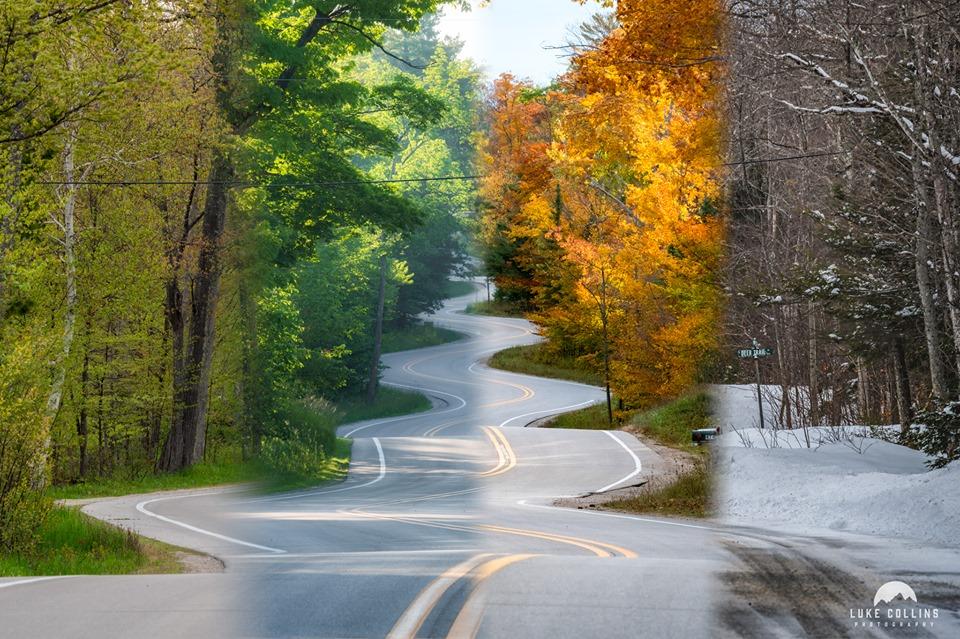 door county winding road in all four seasons,