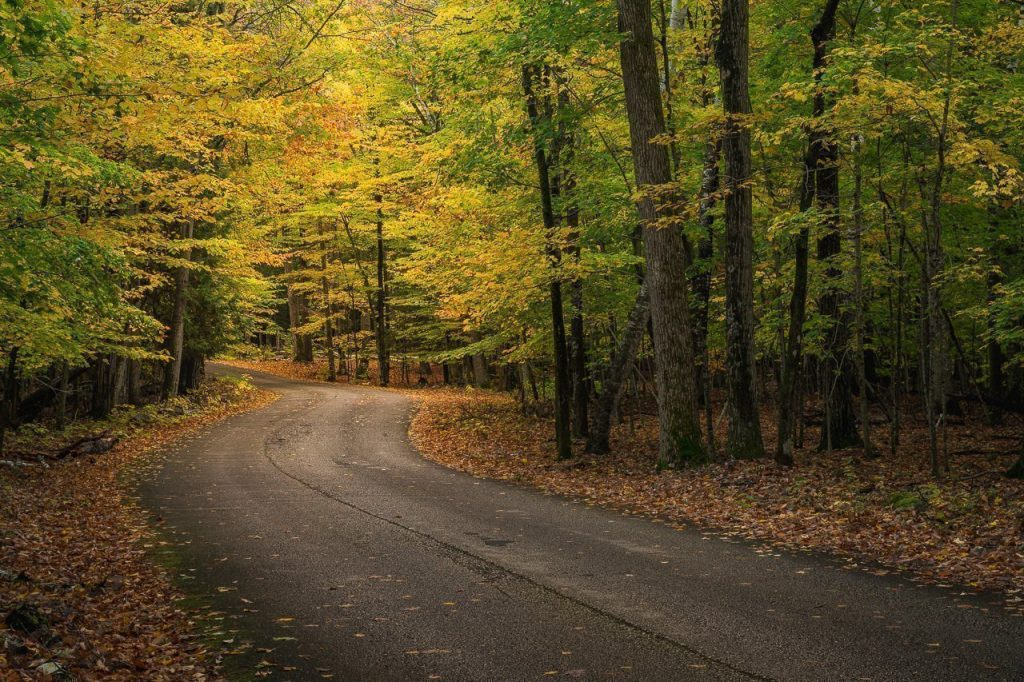 potawatomi state park, state park, sturgeon bay, door county, fall colors, fall color locations, fall color photography, autumn, road